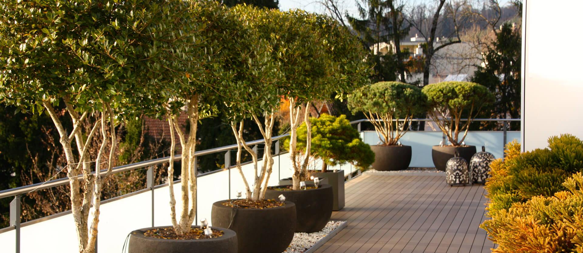 Terrasse Zürcher Oberland - Gartengestaltung