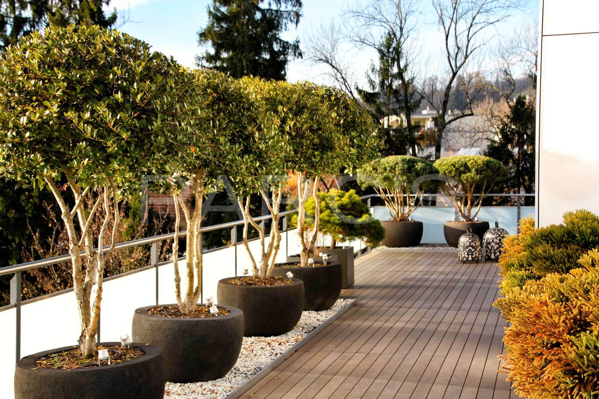 Terrassengestaltung Parcs Gartengestaltung Gmbh