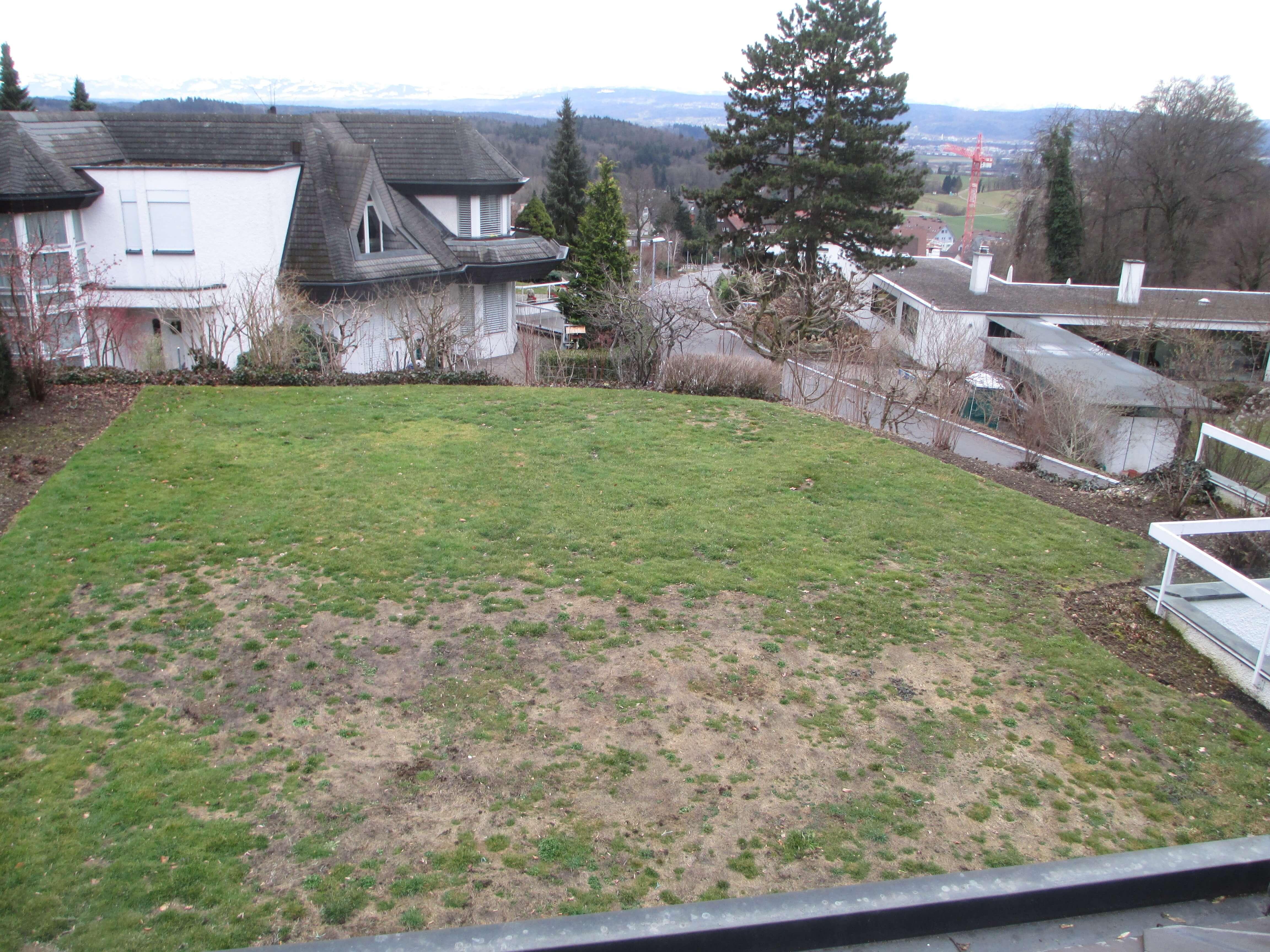 Vorher 2 Gartengestaltung Mit Brunnen
