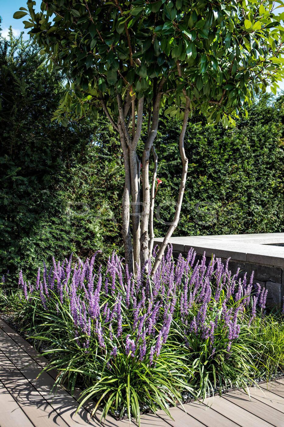 Wohnlicher garten mit pool parc 39 s gartengestaltung for Gartenpool 4