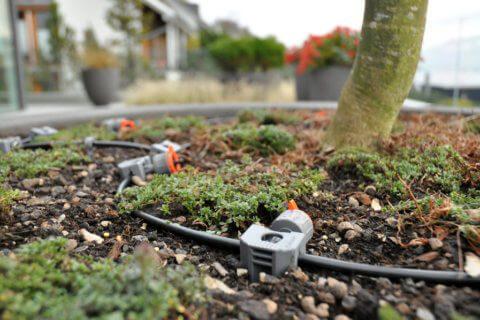 Terrassenbewässerung